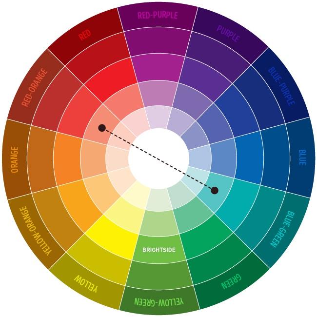 Círculo cromático com cores complementares.
