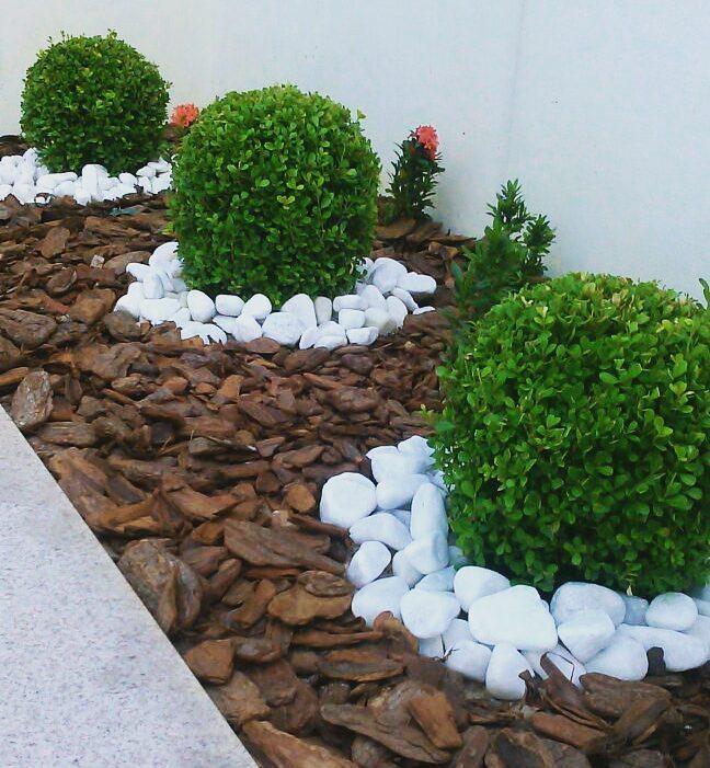Jardim pequeno e delicado com seixo branco.