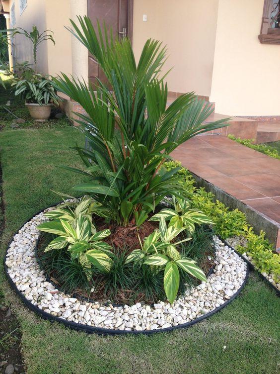 Área externa decorada com várias plantas.