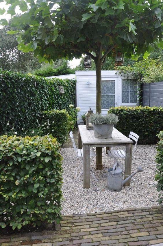 Área externa decorada com plantas e mesa.