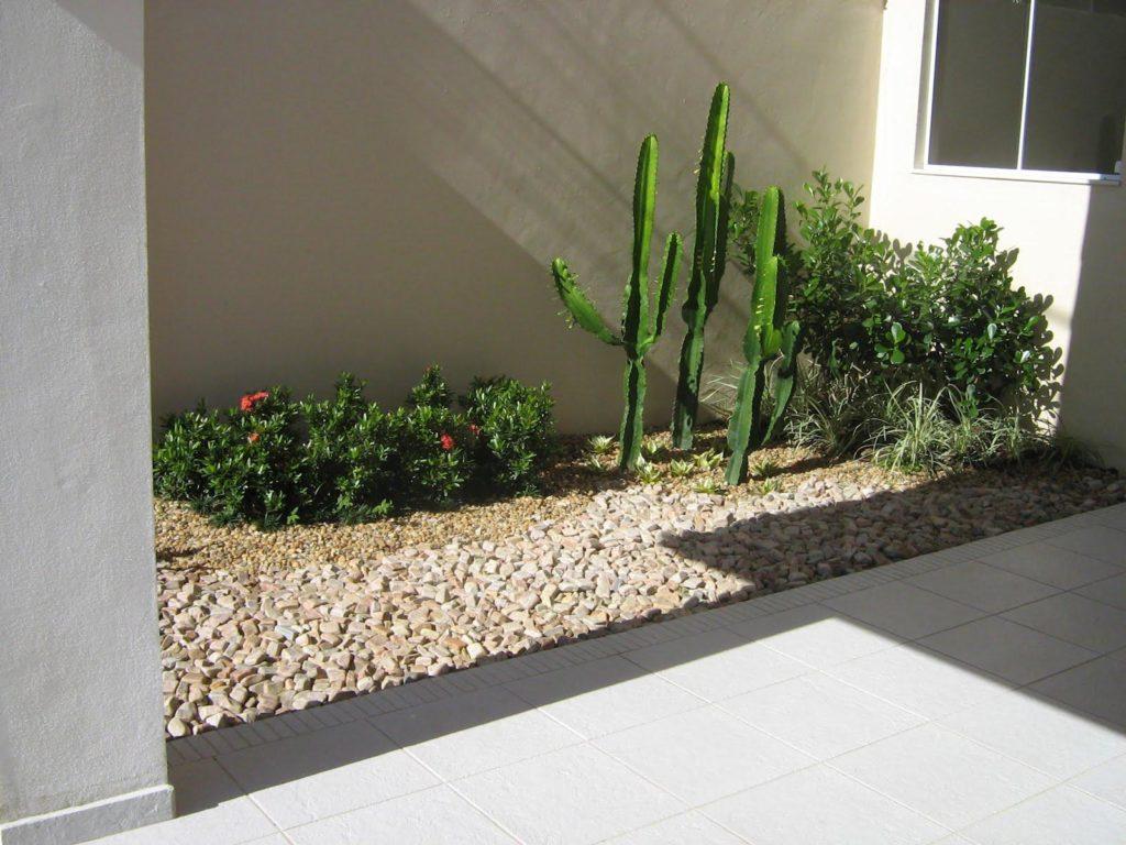 Jardim com pedras e cactos.