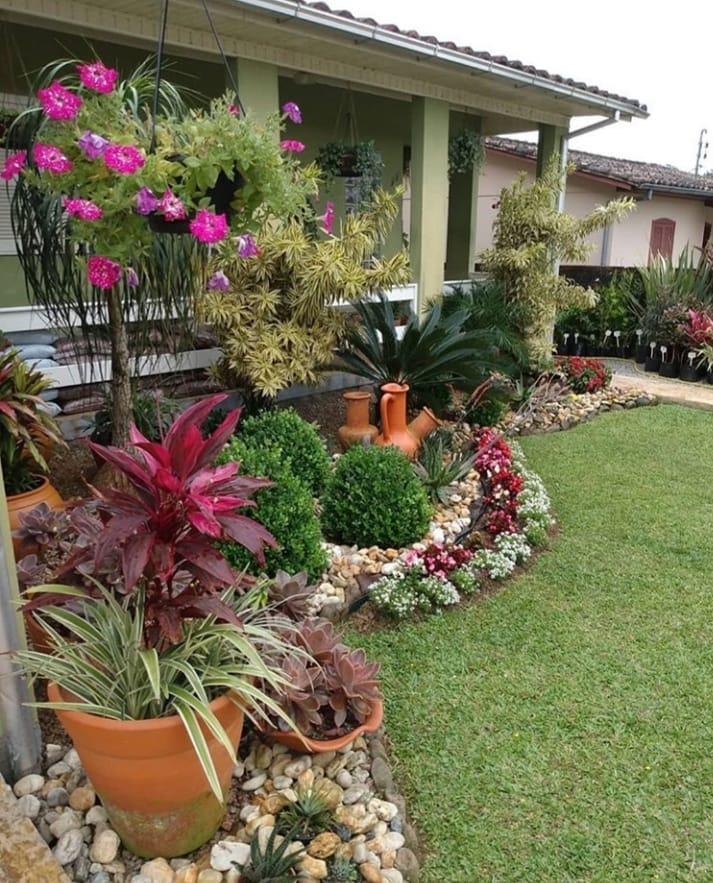 Área externa com arbustos e suculentas.