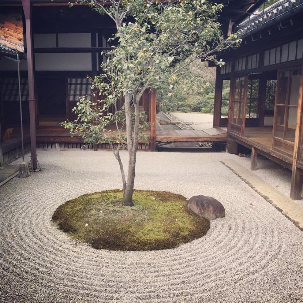 Jardim de inverno minimalista.