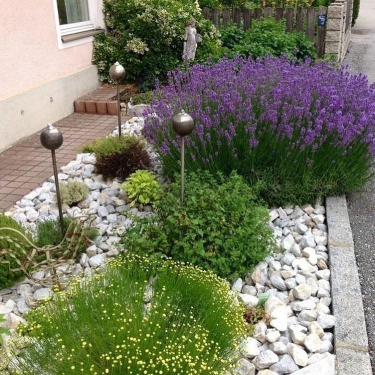 Jardim com pedras portuguesas e lavanda.