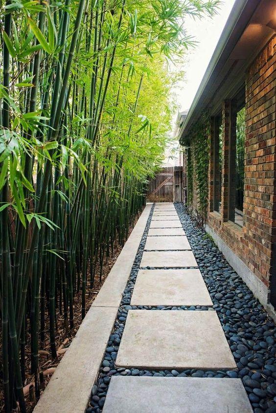 Corredor externo com bambus.
