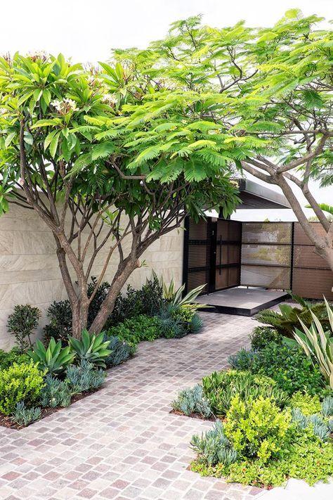Área da entrada com árvores.