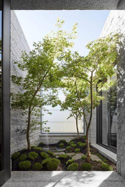 Jardim com três árvores.