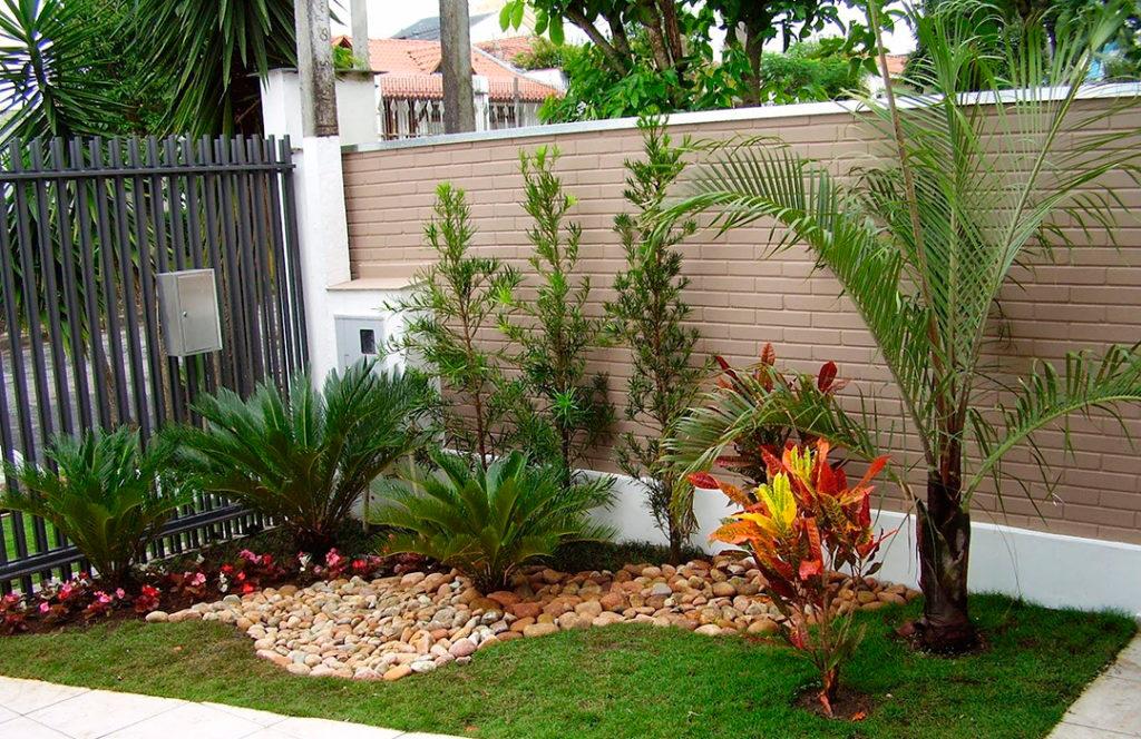 Jardim com várias espécies de plantas.