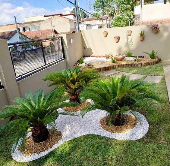 Jardim na parte da frente da casa com plantas médias.