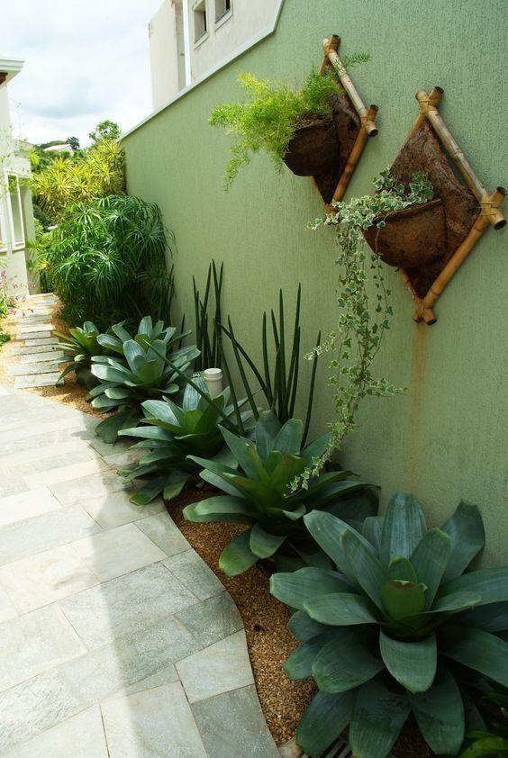 Jardim com plantas médias e altas.