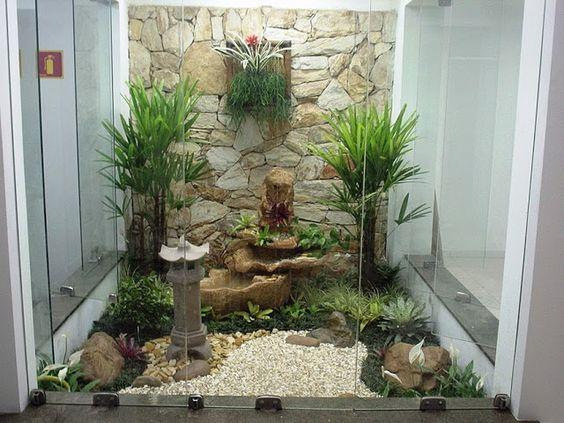 Plantas para jardim de inverno com fonte.