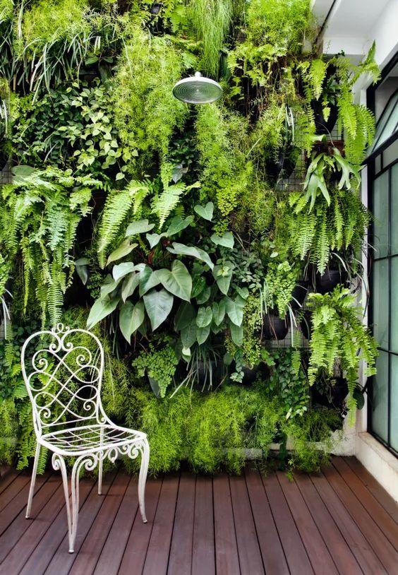 Chuveiro no meio do jardim vertical.