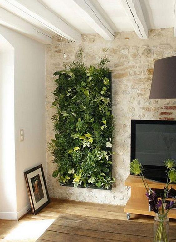 Sala de estar com plantas.