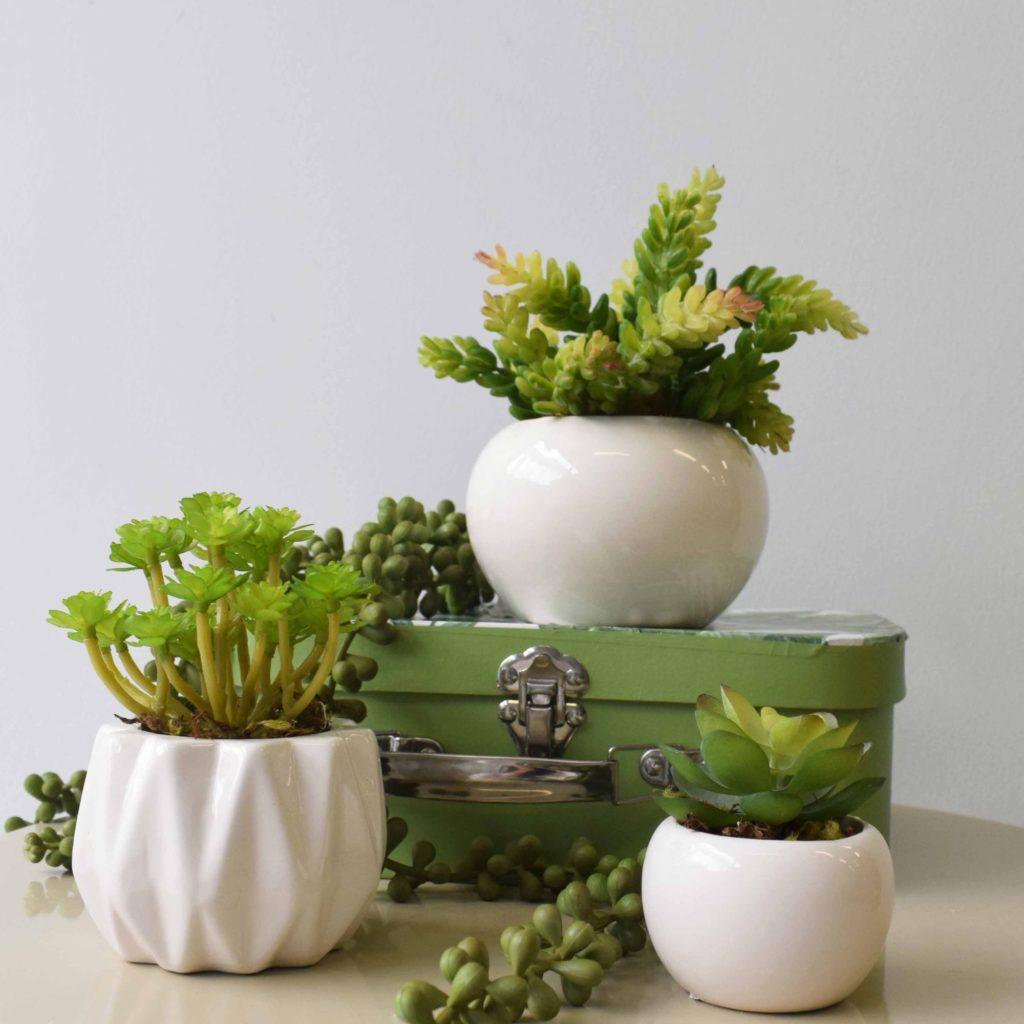 Vasos de cerâmica branca para plantio.