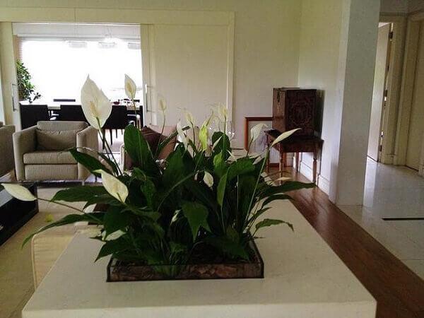 Sala de estar neutra com mesa de centro branco e arranjo de flor.
