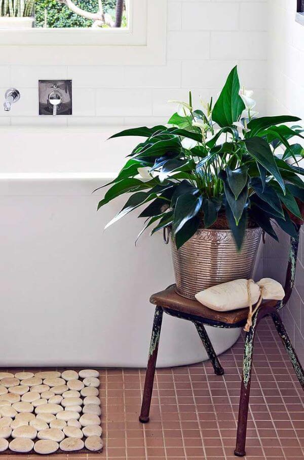 Banheiro com vaso de planta.