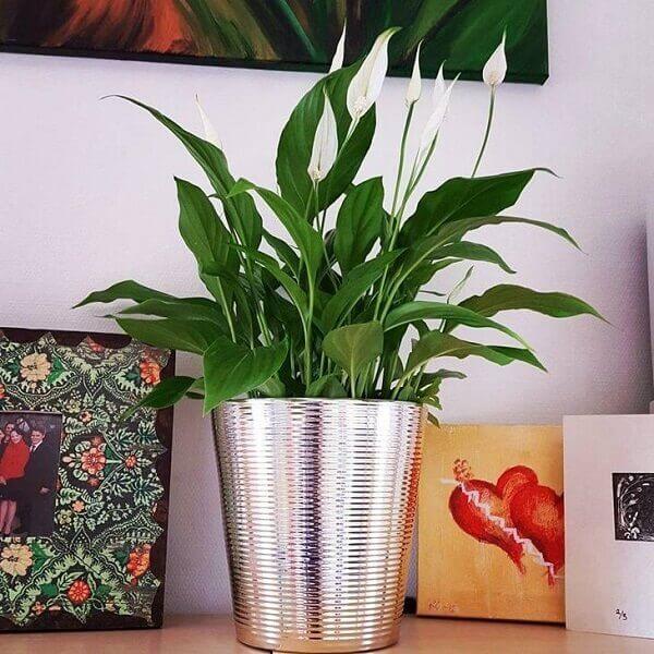 Decoração com quadros e vaso metalizado.