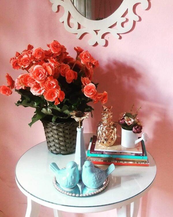 Ambiente decorado com vaso de begônia vermelha.