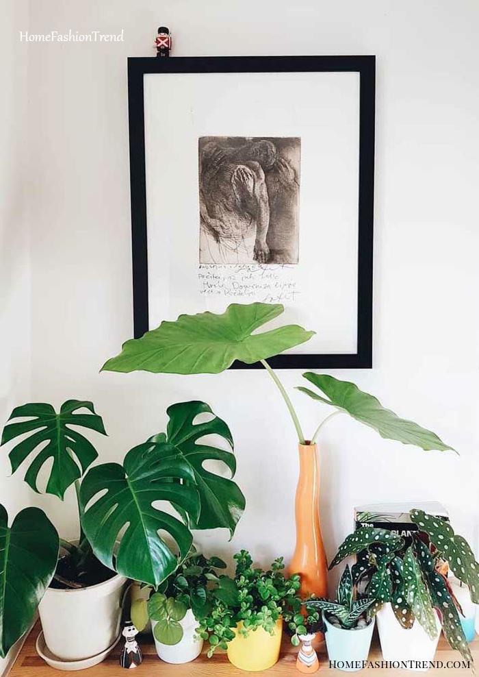 Mesa com vasos de plantas.