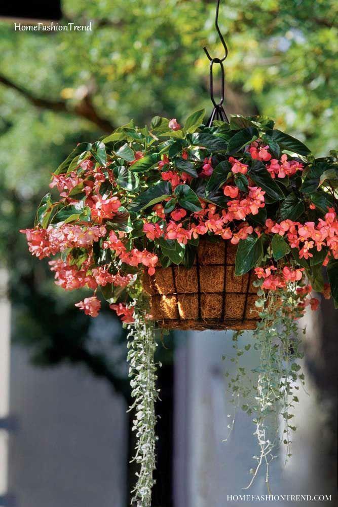 Vaso suspenso com flores.