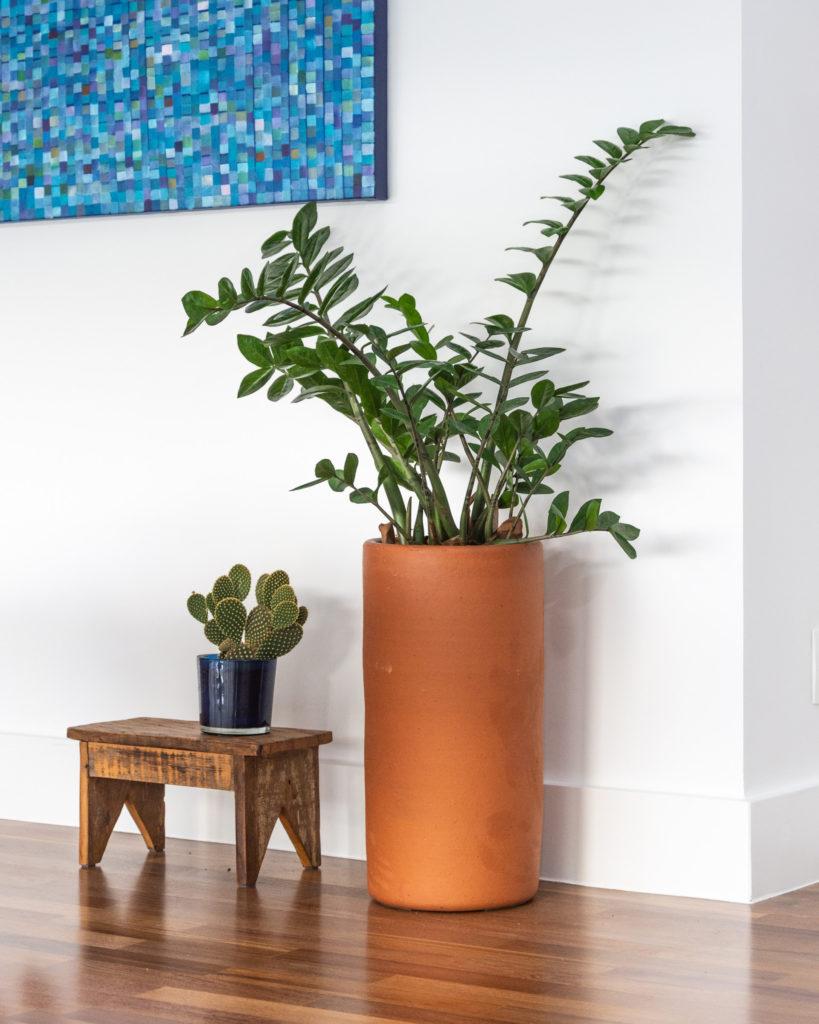 Vaso de barro alto e moderno para zamioculca.