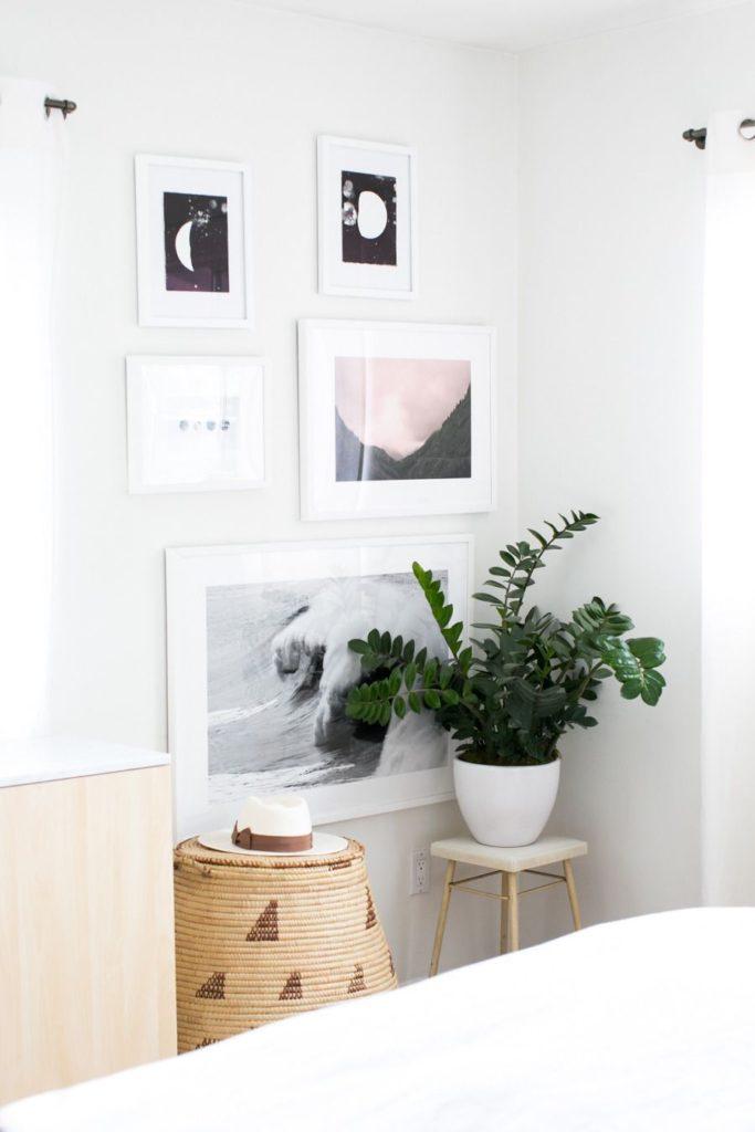 Decoração minimalista com vaso de zamioculca.