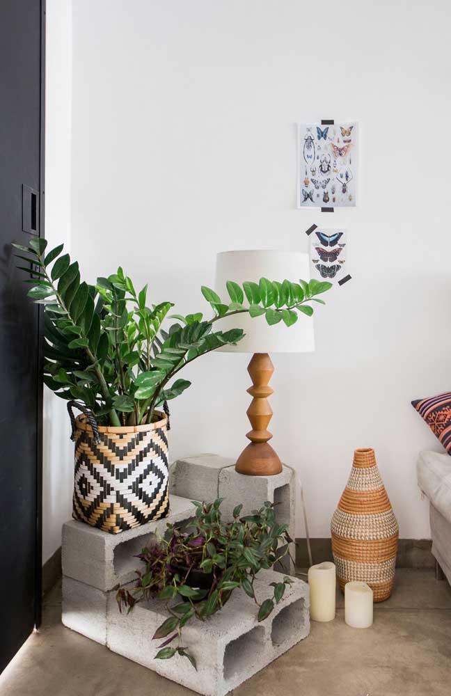 Cesto de palha decorado com vaso de zamioculca.