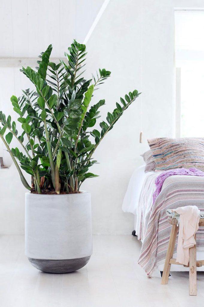 Quarto de casal clean com vaso de cimento grande com planta.
