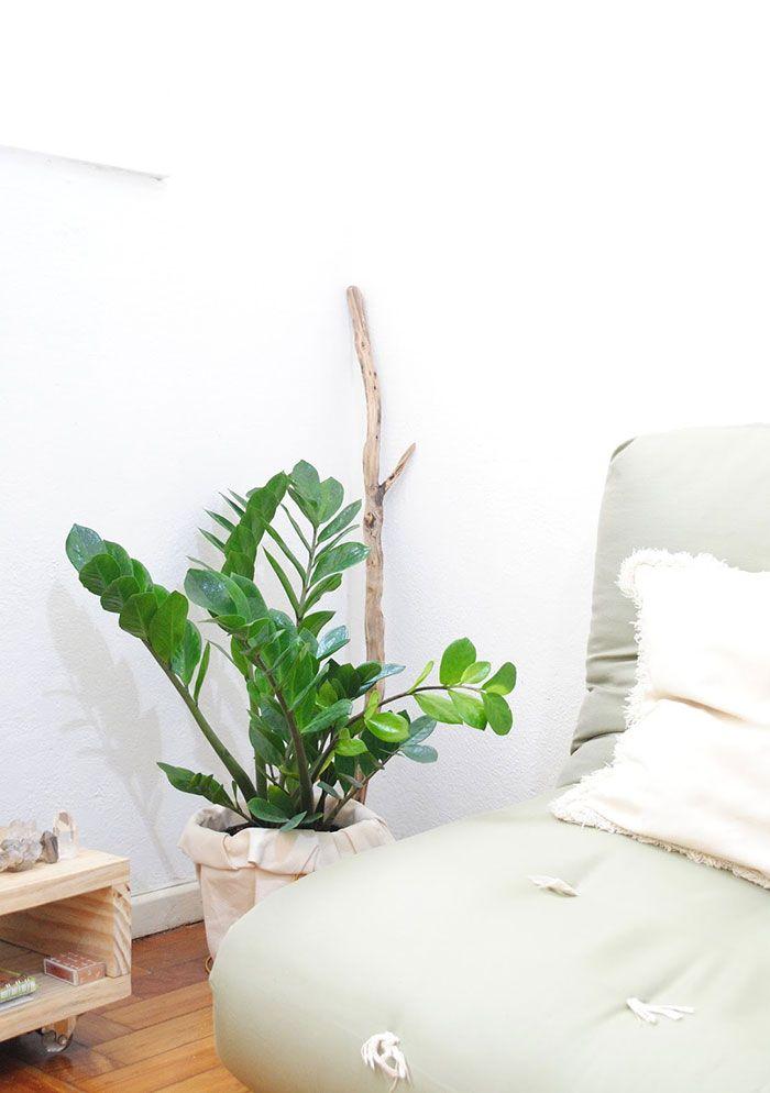 Sala de estar decorada com vaso de planta.