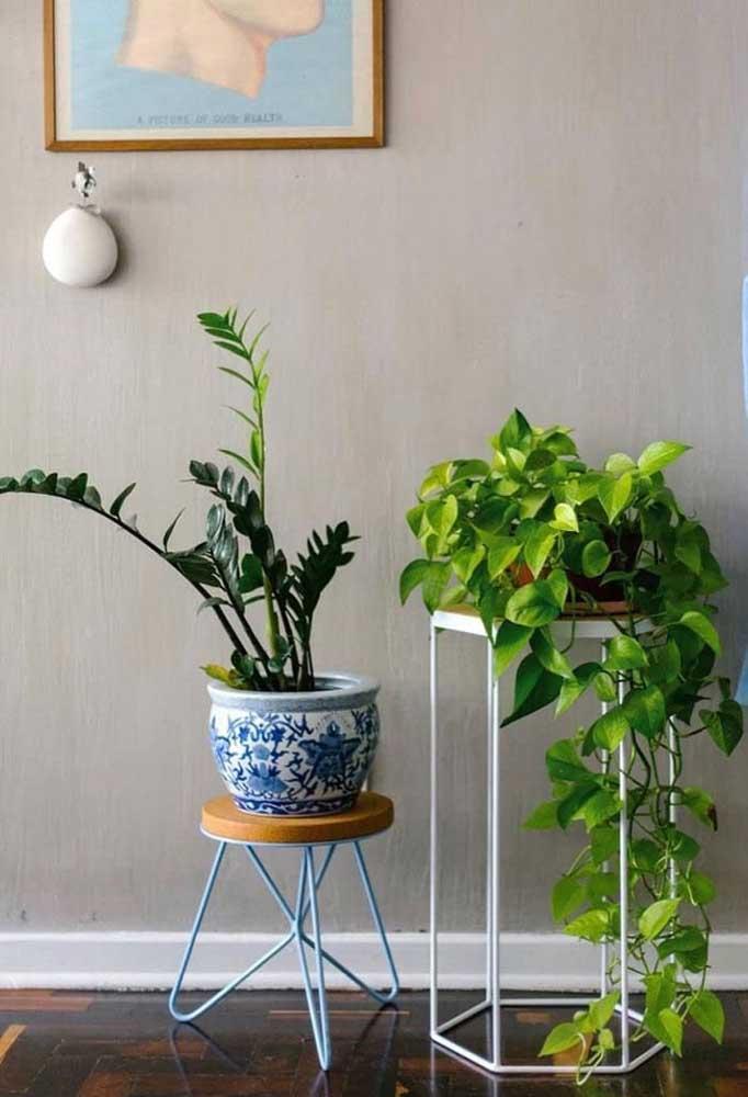Vasos de plantas com suporte metálicos.