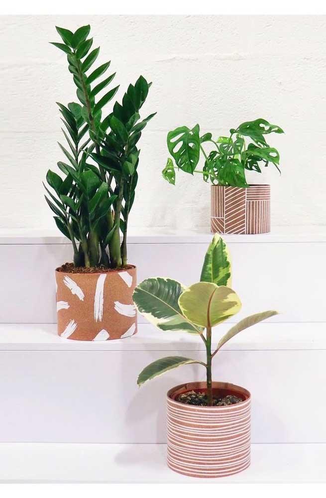 Cestos decorados com vasos de plantas.