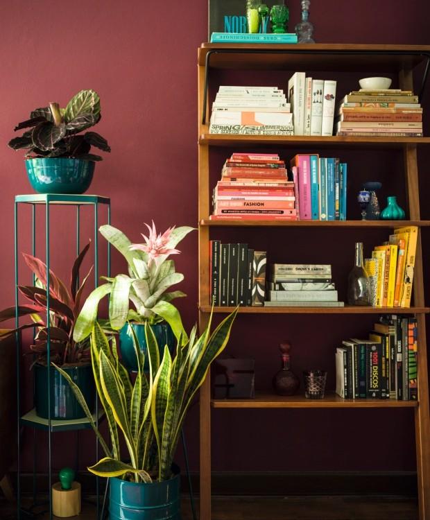 Sala moderna com vasos de plantas.