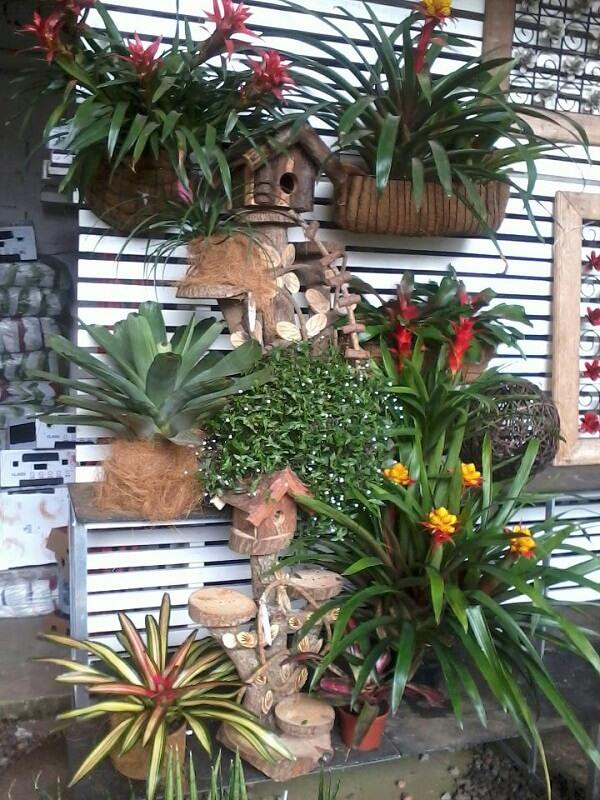 Jardim vertical com bromélias e vasos rústicos.