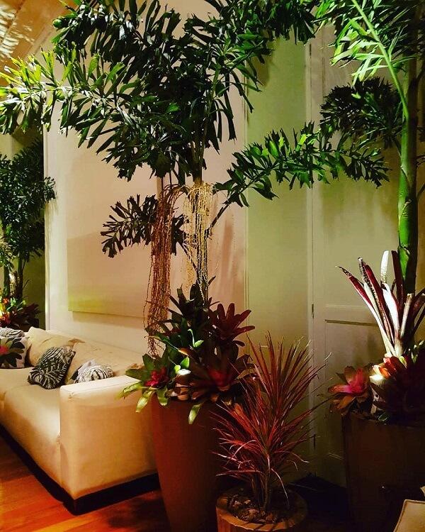 Sala decorada com vasos de bromélias.