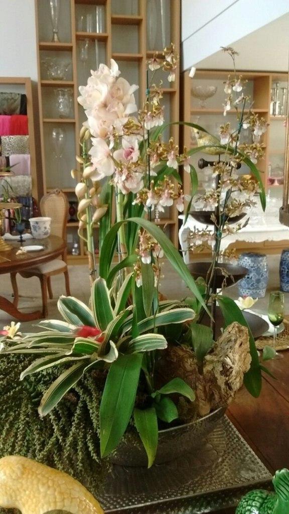 Arranjo com bromélia e orquídea.
