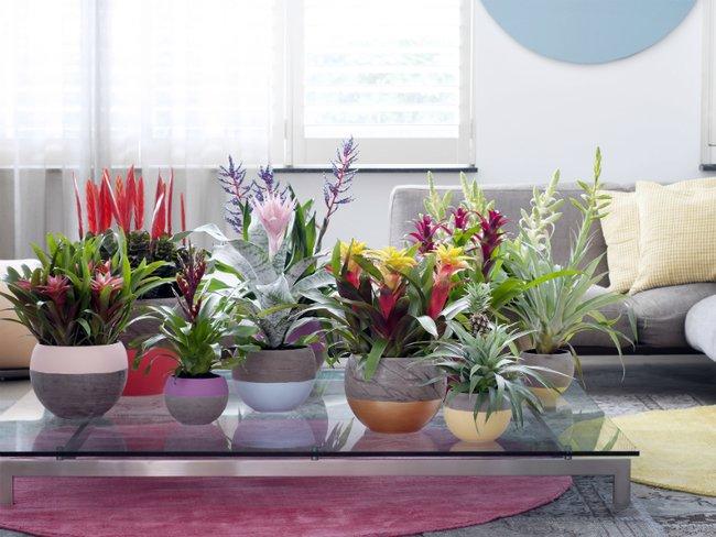 Sala moderna com mesa de centro de vidro.