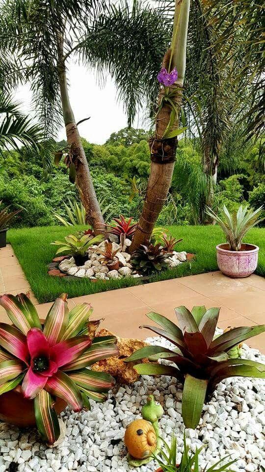 Jardim externo com bromélia e pedras.