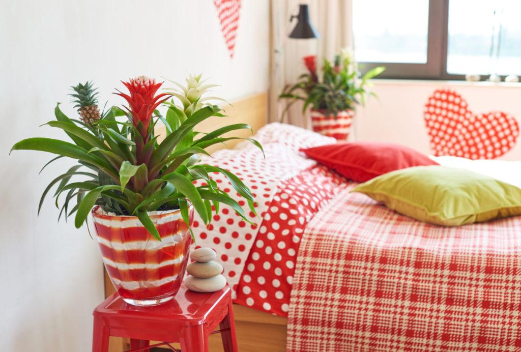 Quarto de casal com decoração vermelha e branca.