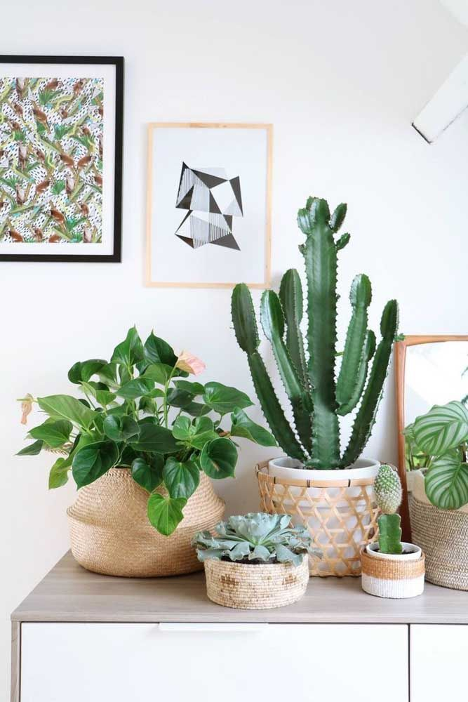Aparador com cestos de palha e plantas.
