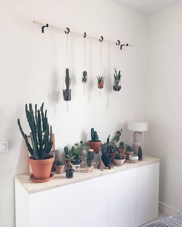 Aparador com plantas e cactos suspensos.