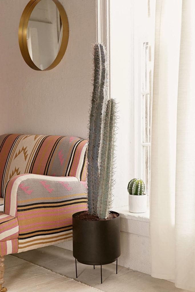 Sala moderna com plantas.