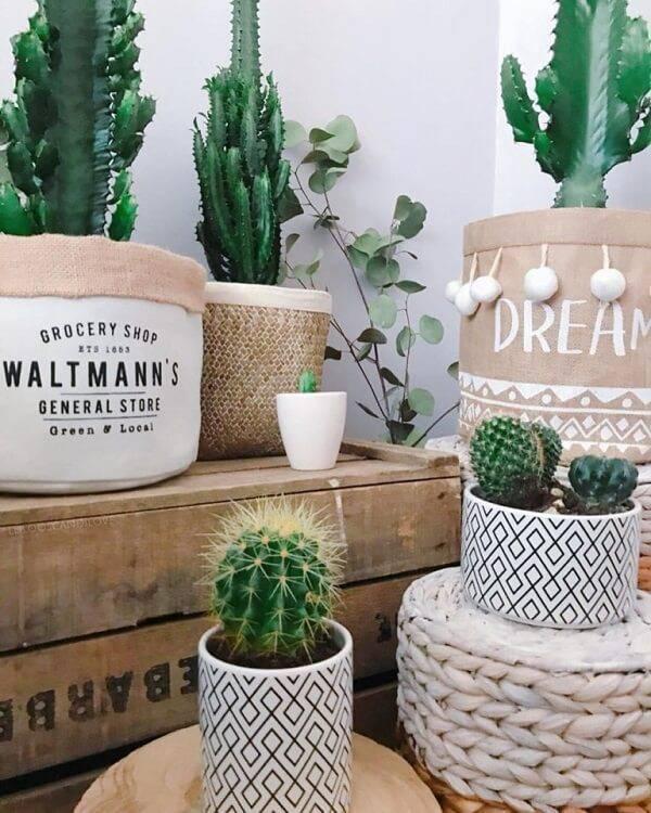 Vasos e cestos de tecido decorados com plantas.