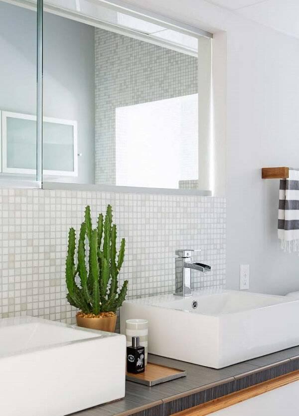 Banheiro com vaso de cacto.