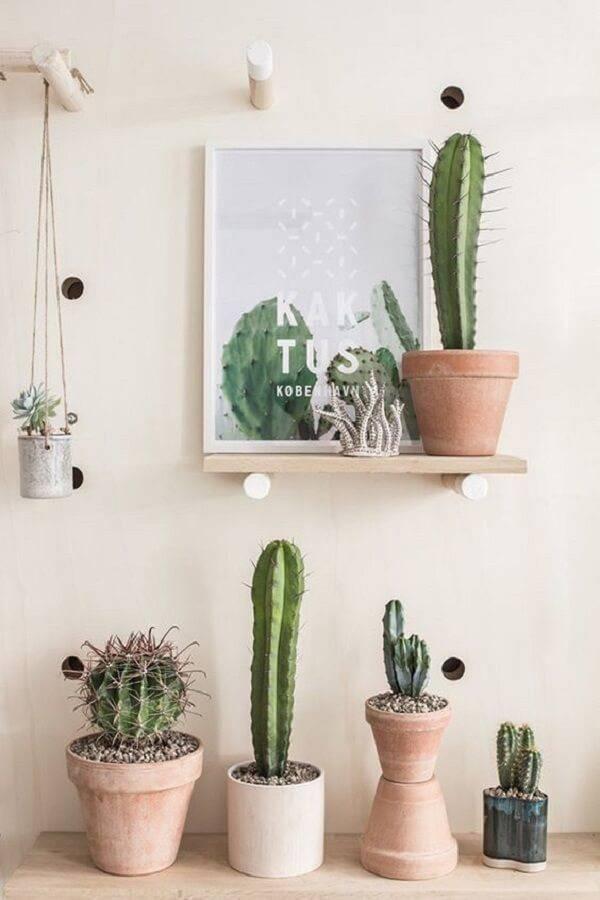 Vasos e quadro de plantas.