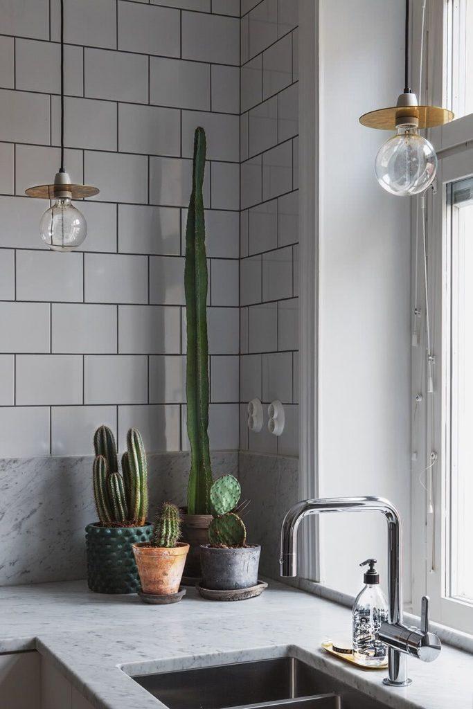 Cozinha decorada com plantas.