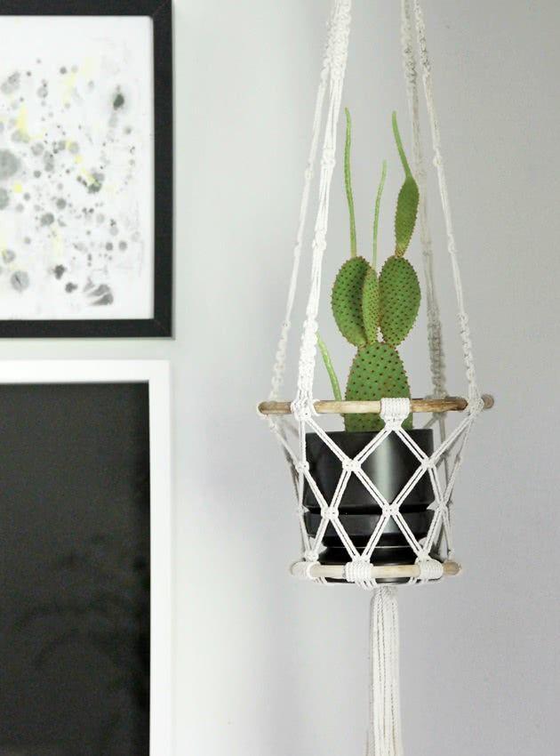 Vaso de cacto com planta.