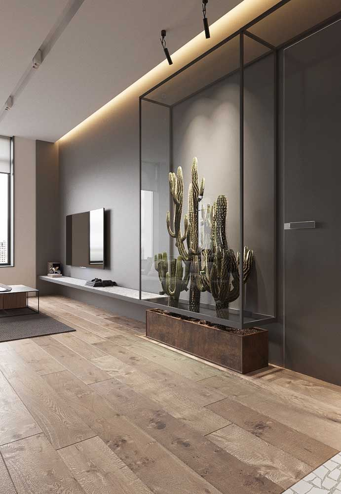 Sala moderna cinza com jardim de cactos.