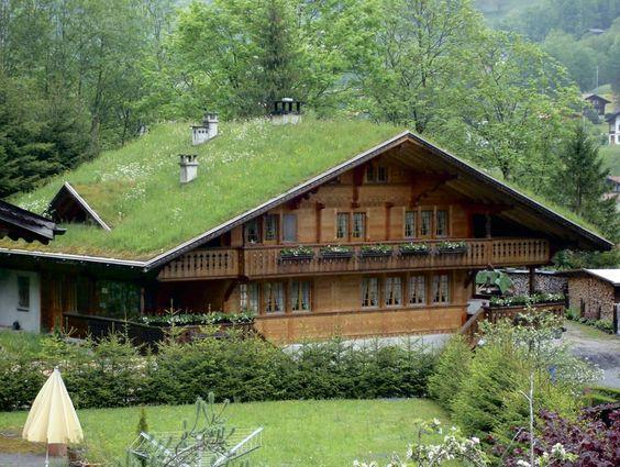 teto verde casa de madeira com jardim frontal