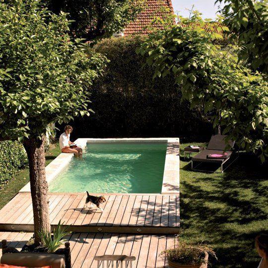piso em madeira espaço pequeno com piscina e jardim