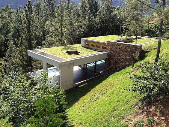 telhado verde montanhas de pinos